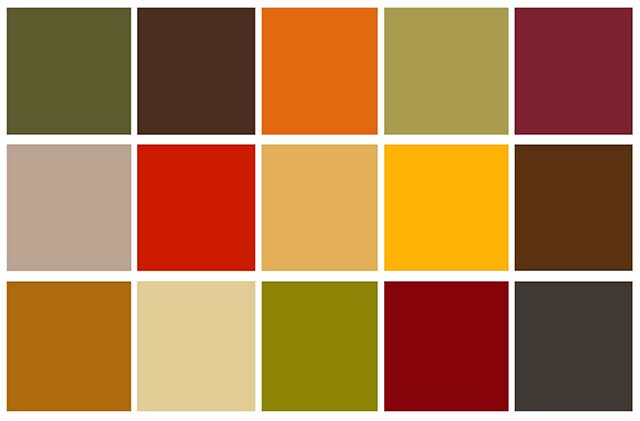 Best Earth Tone Paint Colors